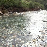 手取川上流
